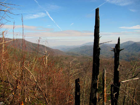 View towards Higgins Ridge and Erwin