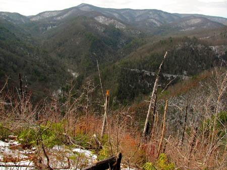 Summit View looking towards Flint Gap and Coldspring Mtn.