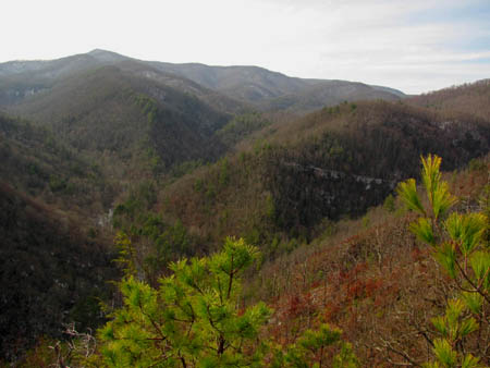 View over Rocky Fork towards Coldspring Mtn.