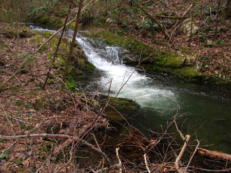 Cascade and Swimming Hole