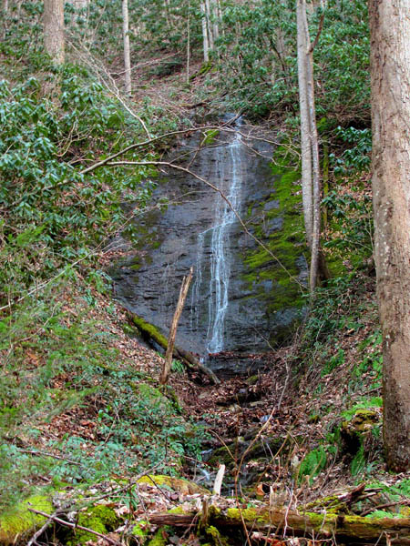 Small wet weather falls found along Clarks Creek